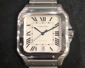 Cartier Santos De Cartier Large Size Interchangeable Metal & Leather Bracelet WSSA0009